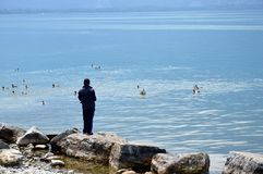 Pescando nel lago geneva Immagini Stock