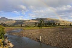 Pescando nel parco nazionale di Yellowstone Immagine Stock