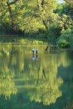 Pescando o rio de Morava, Sérvia foto de stock royalty free