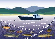 Pescando per il pesce di acqua dolce Immagini Stock