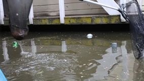 Pescando a poluição plástica fora do canal com redes filme