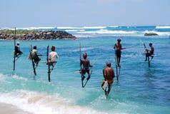 Pescando in Sri Lanka Immagine Stock