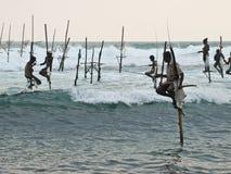 Pescando in Sri Lanka Immagini Stock