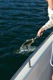 Pescando su una barca Fotografia Stock