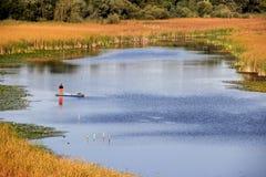 Pescando sul lago - natura pura Fotografie Stock Libere da Diritti