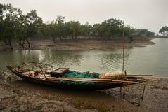 Pescando a Sundarban, l'India Immagini Stock