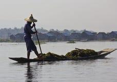 Pescatore asiatico sul lago Inle Immagini Stock