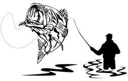 Pescatore che cattura una spigola Fotografie Stock