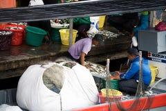 Pescatore che vende pesce al pilastro immagini stock libere da diritti