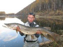 Pescatore con il luccio gigante Fotografie Stock Libere da Diritti