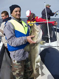 Pescatore del mare con merluzzo enorme Fotografia Stock