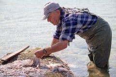 Pescatore del polipo in Grecia Fotografie Stock Libere da Diritti