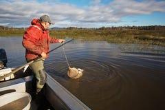 Pescatore dell'anguilla Fotografie Stock
