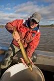 Pescatore dell'anguilla Immagine Stock