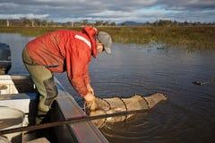 Pescatore dell'anguilla Fotografia Stock
