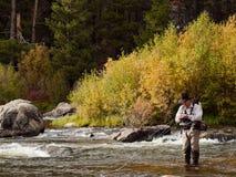 Pescatore della mosca Fotografie Stock