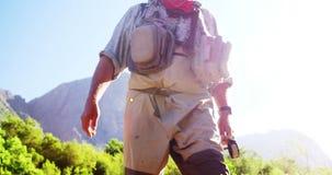 Pescatore della mosca che cammina nel fiume con la canna da pesca video d archivio