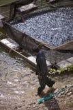 Pescatore e fermo turchi in Turchia Fotografie Stock Libere da Diritti
