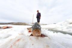 Pescatore e ghiaccio Fotografia Stock
