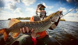 Pescatore e grande luccio del trofeo immagine stock