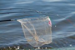 Pescatore e guadino Fotografie Stock