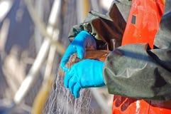 Pescatore e pesci fotografia stock libera da diritti