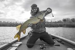 Pescatore felice con il grande trofeo del pesce del luccio alla barca con le attrezzature di pesca immagine stock libera da diritti