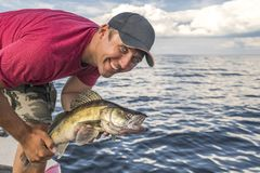 Pescatore felice con il trofeo del pesce dello zander dei glaucomi alla barca fotografia stock