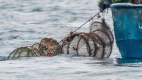 Pescatore Hauling Fish Trap video d archivio
