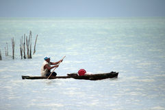 Pescatore locale che controlla il suo trappole Immagine Stock Libera da Diritti