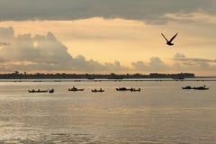 Pescatore a Phnom Penh Fotografia Stock