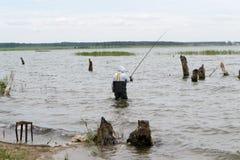 Pescatore sul lago immagini stock