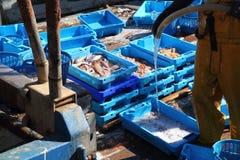Pescatore sulle caselle di pesci di pulizia della piattaforma di barca del pescatore Fotografie Stock Libere da Diritti