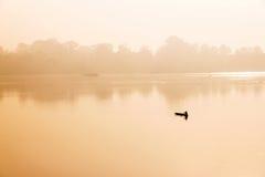 Pescatore in una barca su un fiume Immagine Stock