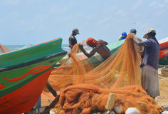 Pescatori al servizio di pesci di Negombo (Sri Lanka) Immagine Stock Libera da Diritti