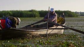 Pescatori che controllano le reti all'alba nel delta di Danubio stock footage