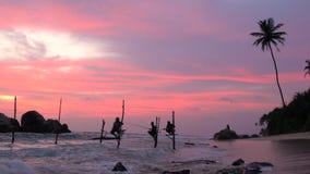 Pescatori del trampolo che pescano con il cielo colourful al tramonto, nr Galle, video d archivio