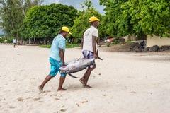 Pescatori e grandi tonnidi Fotografie Stock Libere da Diritti