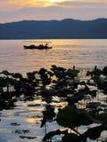 Pescatori a Hangzhou Fotografia Stock Libera da Diritti