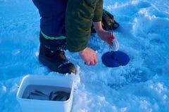 Pescatori impegnati nella pesca sul ghiaccio Immagine Stock