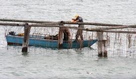 Pescatori lavoranti nel mare adriatico italiano Immagine Stock Libera da Diritti
