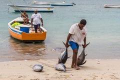 Pescatori in Mauritius Immagine Stock Libera da Diritti