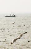 Pescatori non identificati in una barca Immagine Stock