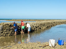 Pescatori in penne Fotografia Stock