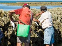 Pescatori in penne Fotografie Stock Libere da Diritti