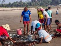 Pescatori sulla spiaggia Goa Immagini Stock