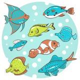 pesce 8 Immagine Stock