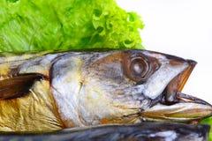 Pesce affumicato sulla fine del piatto sullo sgombro fotografie stock