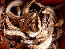 Pesce al forno Immagini Stock Libere da Diritti