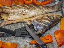 Pesce al forno Fotografie Stock Libere da Diritti
